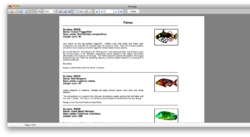 Preview images in Mac OS X report